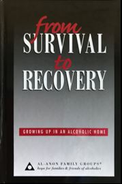 From Survival To Recovery - B-21 thumbnail